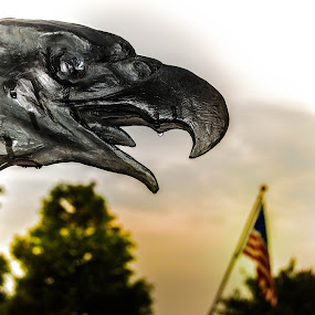 American Freedom by Jon Cody - Buildings & Architecture Statues & Monuments ( statue, eagle, flag, freedom, american flag )