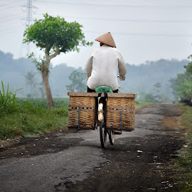pulang pagi by Indra Prihantoro - Transportation Bicycles ( bicycles, rural )