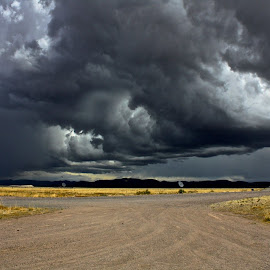 At the Very Large Array. by Nipanjana Patra - Landscapes Cloud Formations