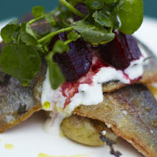 Rainbow Trout With Horseradish Yoghurt And Balsamic Beets