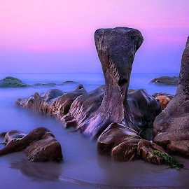 Early morning at Co Thach beach by Dzung Le - Landscapes Sunsets & Sunrises ( blue hour, twilight, sea, vietnam, beach, sunrise, landscape, rocks, early morning,  )