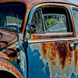 Rusty Bug by Barbara Brock - Transportation Automobiles ( vw beetle, rusty vintage car, decaying auto, rusty car, vw bug )