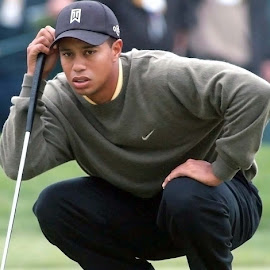 US Open Golf by Oscar Salinas - Sports & Fitness Golf ( olympia field tiger woods at the us oppen golf,  )