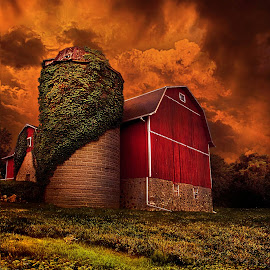 Standing Tall by Phil Koch - Buildings & Architecture Other Exteriors ( vertical, photograph, farmland, yellow, leaves, storm, photooftheday, wicounties, love, sky, barn, nature, tree, autumn, bestoftheday, weather, flower, follow, instagood, orange, twilight, agriculture, horizon, portrait, environment, dawn, season, serene, trees, floral, inspirational, natural light, wisconsin, ray, chaser, landscape, phil koch, spring, sun, photography, farm, vines, severe, horizons, inspired, office, clouds, extreme, park, green, scenic, morning, silo, shadows, wild flowers, field, picoftheday, red, blue, fog, sunset, peace, fall, meadow, summer, landscapephotography, beam, earth, sunrise, landscapes, mist,  )