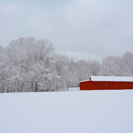 Red Barn by Tyrell Heaton - Landscapes Weather