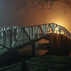 Misty bridge by Darko epa Trajkovski - Uncategorized All Uncategorized ( scary, park, fog, spooky, night, bridge, horror, mist )