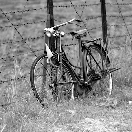 old bike by Moch Syahroni - Transportation Bicycles ( old, vintage, black and white, transportation, bicycle, land, device,  )