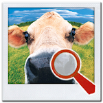 Find It ™ MEGA Find Difference 7.6 Apk