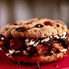 Turtle Cookie Ice Cream Sandwich