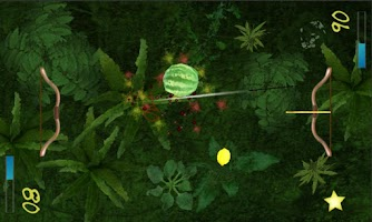 Screenshot of Two Player Fruit Shoot
