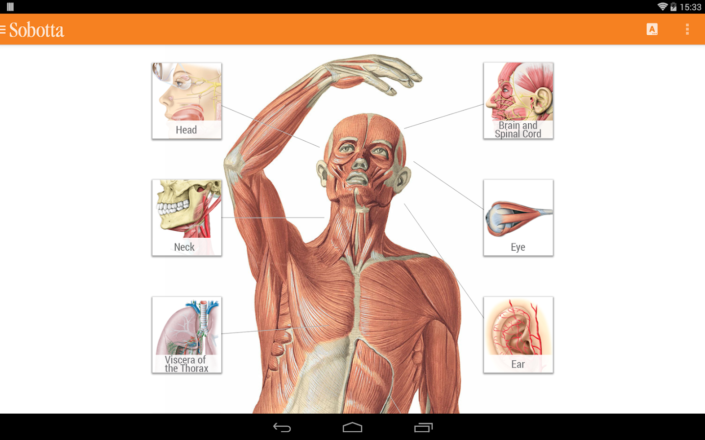 Sobotta Anatomy Atlas Screenshot 7