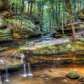 Morning Trickle by Mark Bolen - Landscapes Forests ( old man's cave, forest, rock formation, hocking hills, landscape, renewal, green, trees, forests, nature, natural, scenic, relaxing, meditation, the mood factory, mood, emotions, jade, revive, inspirational, earthly, relax, tranquil, tranquility )