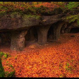 Cave Pustý kostel by Petr Klingr - Landscapes Caves & Formations ( hdr, autumn, leaves, cave, rocks )