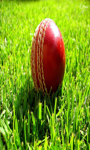 Cricket News Around the World