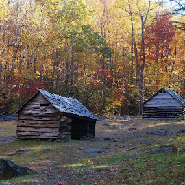 Smokey Mountain History by Bridgette Rodriguez - Novices Only Landscapes ( cabin, structure, mountain, autumn, fall, cabins, smokey mountain, landscape, structures )