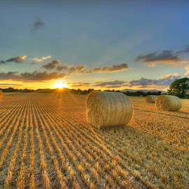 Straw At Summerfield Farm by Myles Lambert - Landscapes Sunsets & Sunrises ( #harvest, #balesofstraw, #lambertimageshdr, #harvestsunset, #sunset, #summersunset, vertical lines, pwc,  )
