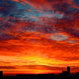 Sunrise in Hungary by Edina Zsarnai - Landscapes Sunsets & Sunrises ( hungary, peaceful, sky, nature, colorful, edina zsarnai, beautiful, happiness, sunrise, morning, szolnok, Earth, Light, Landscapes, Views,  )