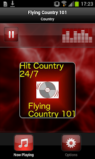 Flying Country 101 - screenshot