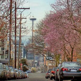 THOMAS STREET TO THE SPACE NEEDLE by William Thielen - Novices Only Street & Candid ( landmark, icon, urban, space needle, seattle, neighborhood, capitol hill, spring )