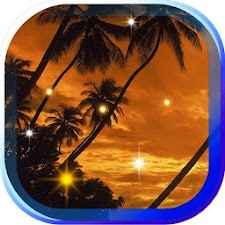 Beach Tropical Live Wallpaper