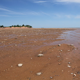 by Linda Pickrell - Landscapes Beaches ( tides, sand, nova scotia, bay of fundy, beach, landscape )