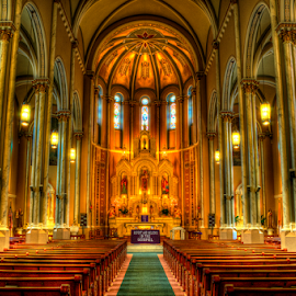 Cathedral by John Larson - Buildings & Architecture Places of Worship ( lights, altar, church, candles, pews, cathedral, stain glass windows )