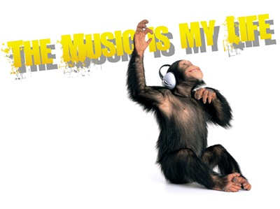 music-is-my-life