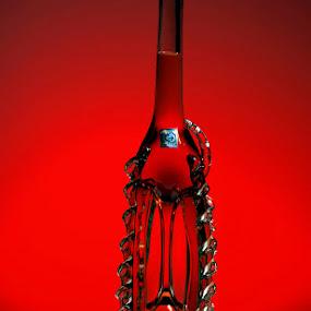 Red Bottle by Jim Westcott - Artistic Objects Still Life ( bottles )