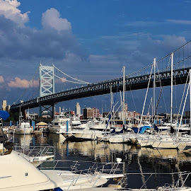 Sunny Philly Day by Alvin Simpson - Buildings & Architecture Bridges & Suspended Structures