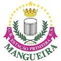 App Mangueira APK for Kindle