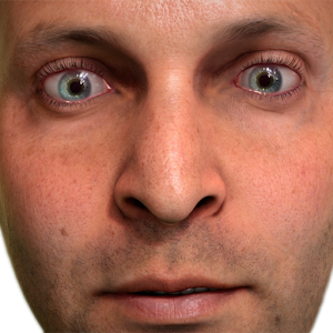 NVIDIA Tegra FaceWorks Demo