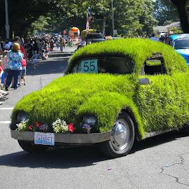 Chiapet Car by Bob Ward - Public Holidays July 4th