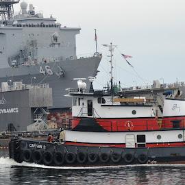 Tug by Thomas Shaw - Transportation Boats ( water, ship, norfolk, 46, white, tug boat, boat, gray, tire, red, tires, virginia, uss, black, tug )