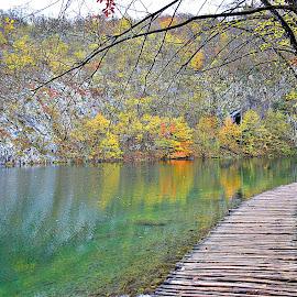 jesen u vodi  by Jelena Puškarić - Landscapes Travel