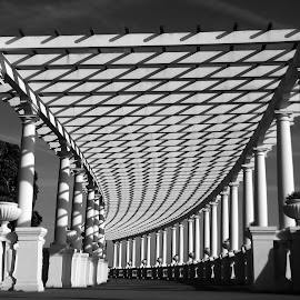 Pergola in Oporto by Antonio Amen - Buildings & Architecture Architectural Detail ( columns, oporto, pergola, shadows, porto,  )