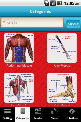 A-Z: Muscle Bone Anatomy