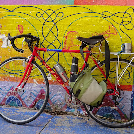 Waiting by Judy Dean - Transportation Bicycles ( bike, graffiti, street, bicycle )