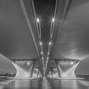 Garhoud Bridge by Andy Arciga (www.arcigaandy.com) - Buildings & Architecture Bridges & Suspended Structures ( bridges and suspended structures, night photography, dubai, long exposure, fuji x-e1, , bridge )