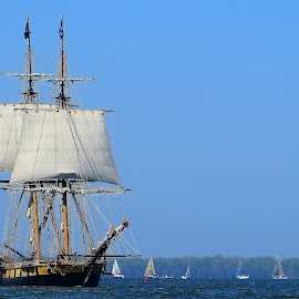 Tall Ship by Brooks Travis - Transportation Boats ( tall ships, us brig niagara, presque isle, lake erie,  )