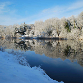 Winter snow by Graham Stirling - Landscapes Forests ( mirror, reflection, winter, trees, snowy, rivers,  )