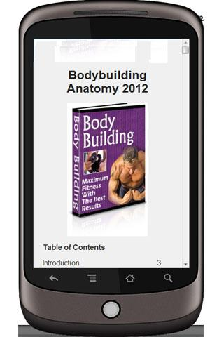 Bodybuilding Anatomy 2012