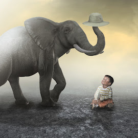 NAJ KETEK SAMO GAJAH by Ilham Abdi - Digital Art Animals ( child, imajination, elephant, sureal, manipulation )