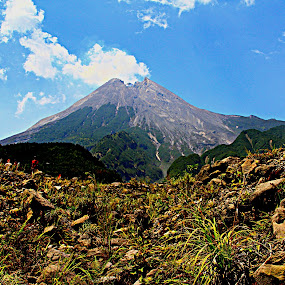 merapi mt by Iman S - Landscapes Mountains & Hills