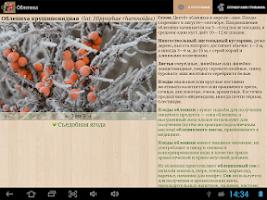 Screenshot of Справочник ягод (Беспл.)