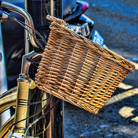 basket by Vibeke Friis - Artistic Objects Other Objects ( bike basket,  )
