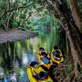 Wailua River, Kauai by Henry Chu - Transportation Boats
