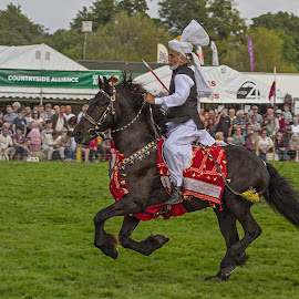 Tent Pegging ay Frampton Game Fair by Nigel Bowsher - News & Events Entertainment ( frampton country fair, tent pegging, horse, malik ata muhammad khan )
