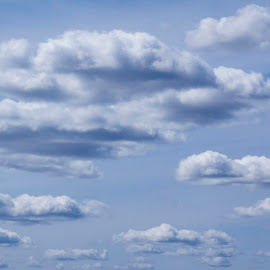 Cloudscape by Pamela NavarraWilliams-Shane - Landscapes Cloud Formations ( stacked clouds, clouds, heavenly, blue sky, sky, puffy clouds, heavens )