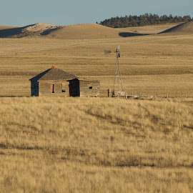 by Matt Larson - Landscapes Prairies, Meadows & Fields