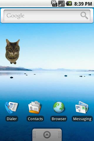 Kitty Widget